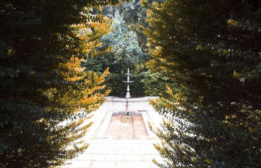 Une image contenant arbre, extérieur, passage, plante, statue