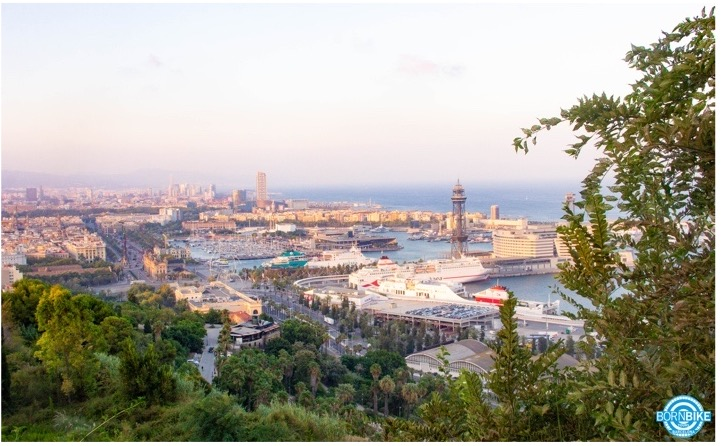 Une image contenant arbre, ciel, extérieur, nature, le port de Barcelone, la mer